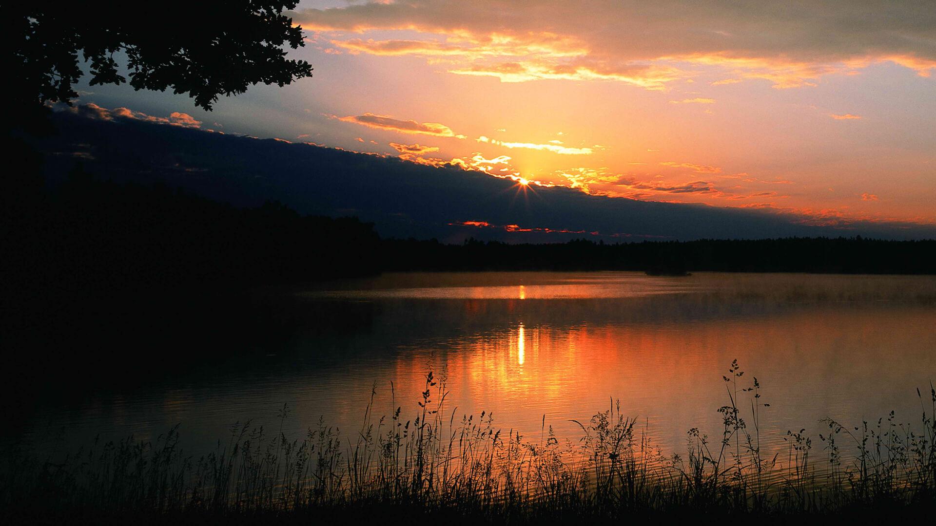Danube Europes Amazon